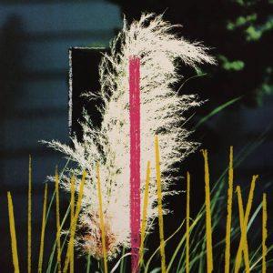 Ohne Titel (I), 2000