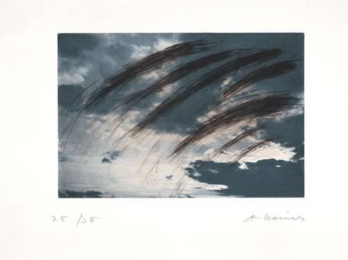 Grauer Himmel, 2000